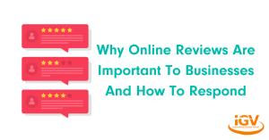 Online-Reviews-Important-Business-IGV-Blog