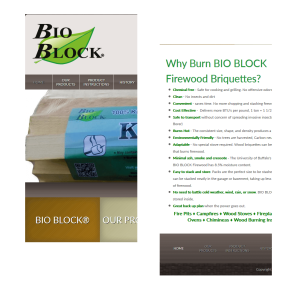Bio-Blocks Website Mobile Before Redesign